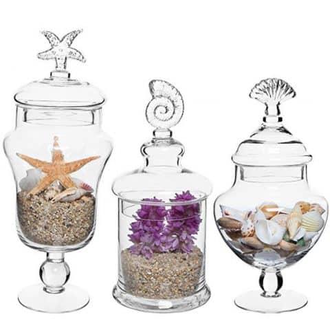 MyGift Set of 3 Apothecary Seashell Jars