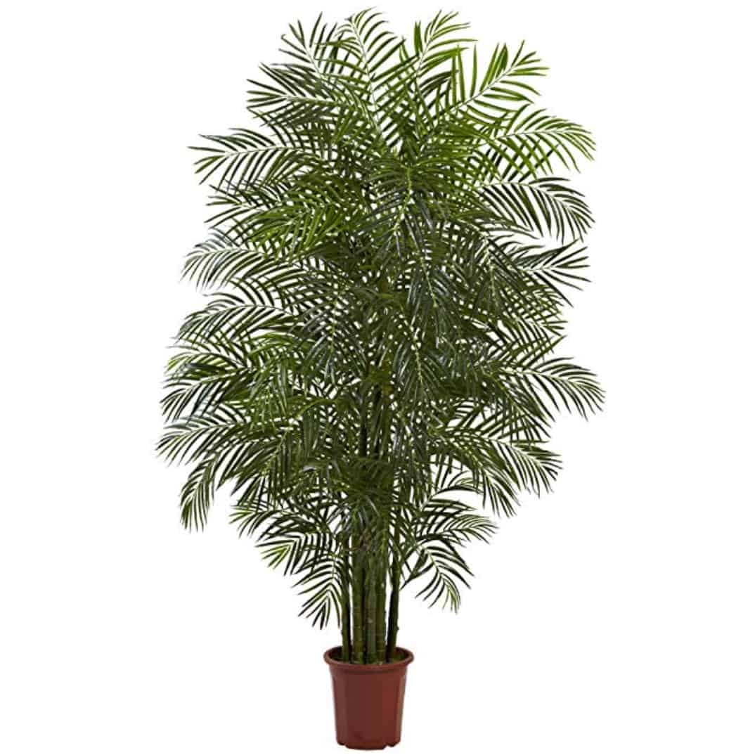 Nearly Natural Areca Palm